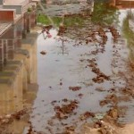 Rain water and dirt extends surrounding of Maheshwari Bhawan, Bikaner