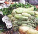 Green vegetables, along with health Toyishly