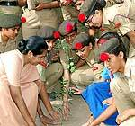 Tree Plantation in Sophia School Bikaner by NCC Cadets and Principal